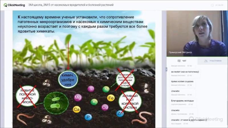 Оригинальный японский ЭМ-5 или создать биозащиту растений от насекомых-вредителей и болезней