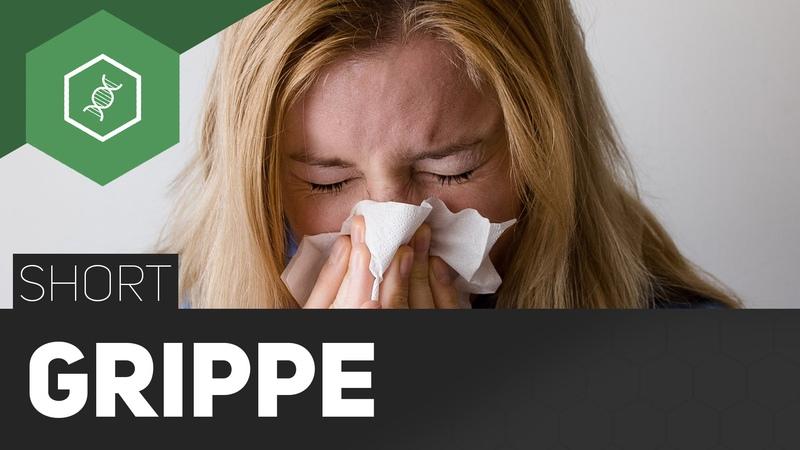 Influenza - Die echte Grippe - TheSimpleShort