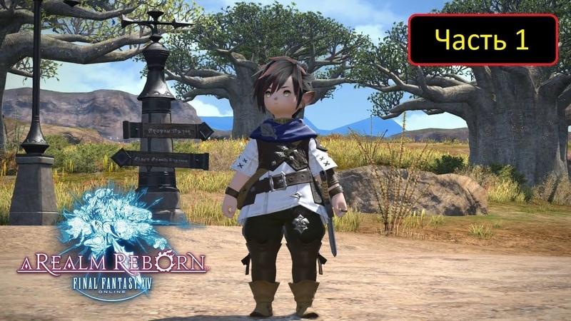Final Fantasy XIV A Realm Reborn (PS4) - Часть 1 С комментариями - Новый герой