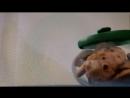 Супер мкльтик Свинья и печенье