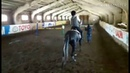 Опять мой любимый конный клуб ❤️/КСК ,,Галоп /спасибо Анна