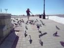 Надя и голуби 31.5.18г. 15 час.