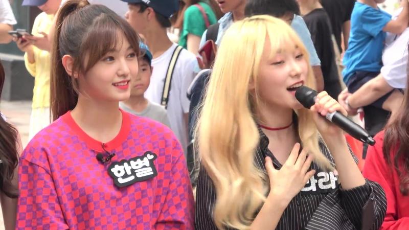 드림노트 - 팀소개 - 명동 버스킹 2018.07.28일.hnh.