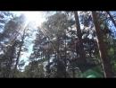 Лесной Экстрим и Дети