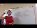 Гринвей бизнес для всех ПОШАГОВАЯ ИНСТРУКЦИЯ-как преуспеть школа Алла Шашко