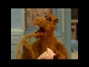 Alf Quote Season 1 Episode 8_Мало