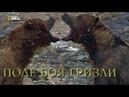 Nat Geo Wild Хищники Аляски Поле боя гризли 1080р