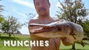 Catching and Cooking The Alligator Fish - All The Tacos