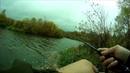 Рыбалка с приманками Аллвега FLUTTER TAIL GRUB BABY SHAD POWER SWIMмикроджиг ловля окуня