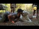 《ЧЕЛОВЕК ЛЕВ》01 Как Выжить в Королевстве Белых Львов Кевин Ричардсон и его львиный прайд