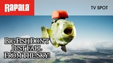 Big fish don't just fall from the sky Rapala Sky Bass
