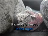 Никита Малинин - Вспышки в ночи (Караоке)
