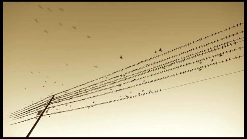 = Yann Tiersen - L`autre Valse D`amelie =
