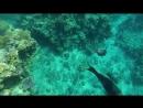 Карибское море Кайо-Ларго
