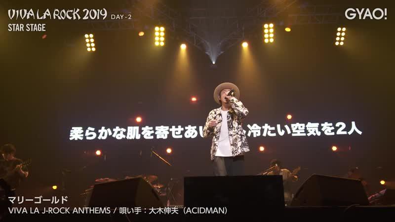 VIVA LA J-ROCK ANTHEMS: Ohki Nobuo (ACIDMAN) - Marigold (VIVA LA ROCK 2019 DAY-2) (GYAO!)