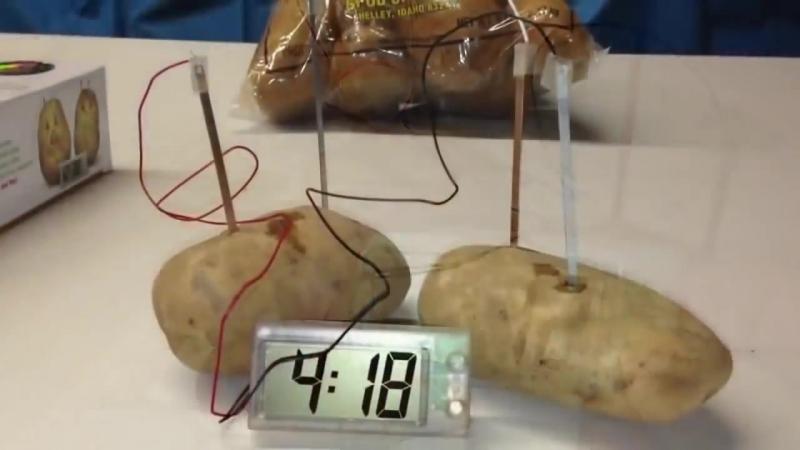 Часы из картошки Potato Clock Картофельные часы работающие от овощей