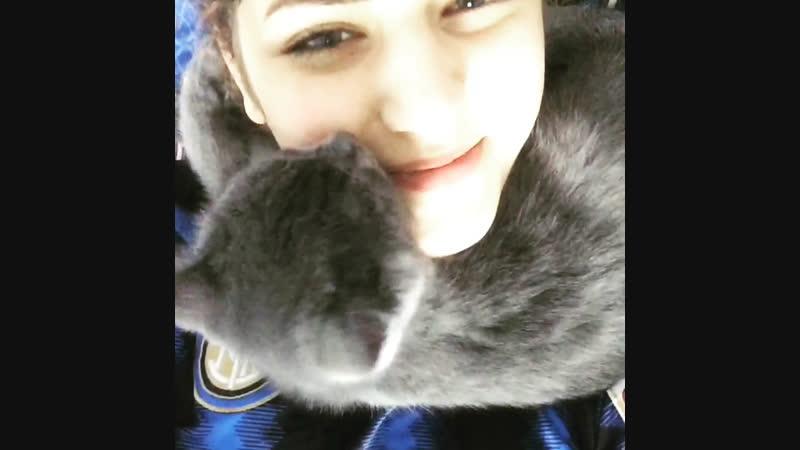 Кошачья любовь. Тиль. Почти Лобода)