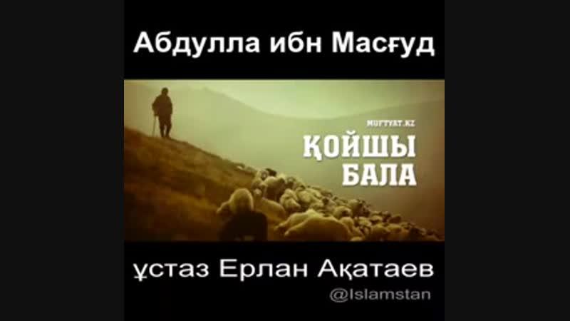 ✔Қойшы бала ұстаз Ерлан Ақатаев