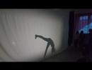 Жираф. Детский театр Танца и СветоТени Plazma . Студия Пируэт. Петрозаводск.