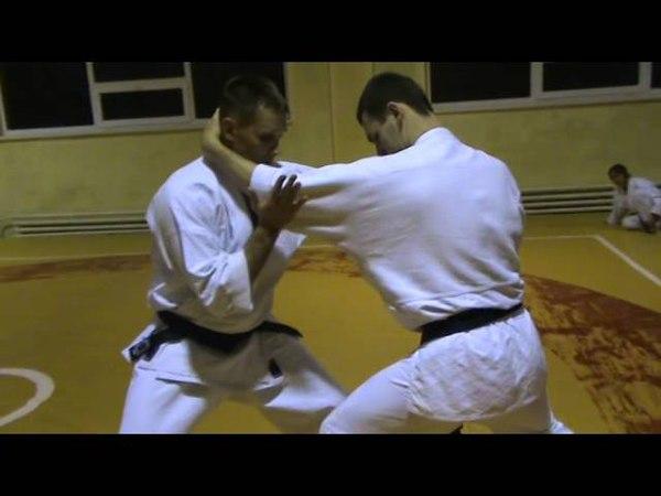 Бушинкан Дзю Дзюцу - ката больевых на локти. (Bushinkan Jiu Jitsu)