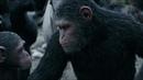 Восстание планеты обезьян 3 часть
