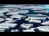 Завораживающий ледоход на Кузбасе