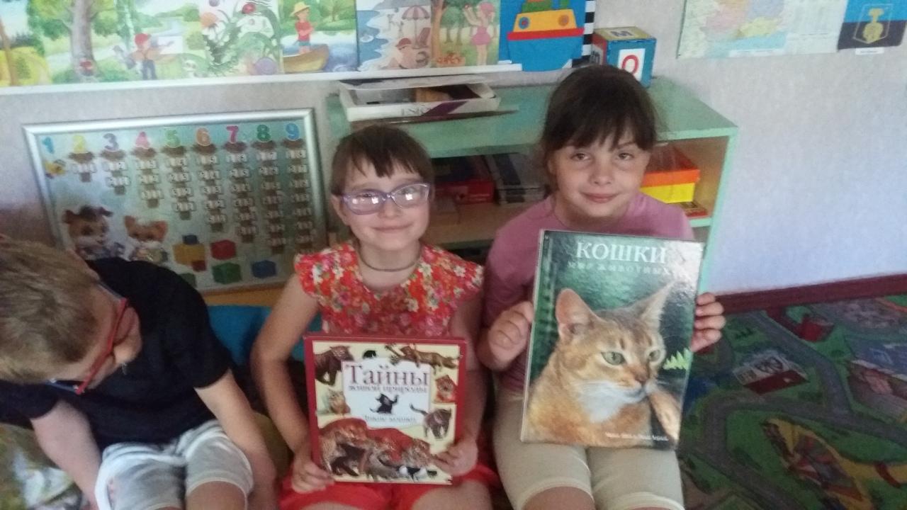 пушистые любимцы, донецкая республиканская библиотека для детей, внестационарный отдел обслуживания, летние каникулы с книгой
