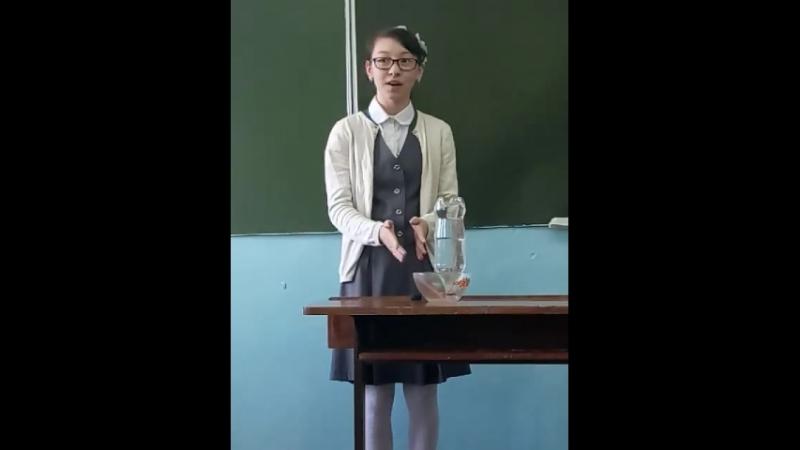 химия 7а класс Сабрина