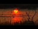 Okavango Delta Vacation Travel Video Guide poroda scscscrp