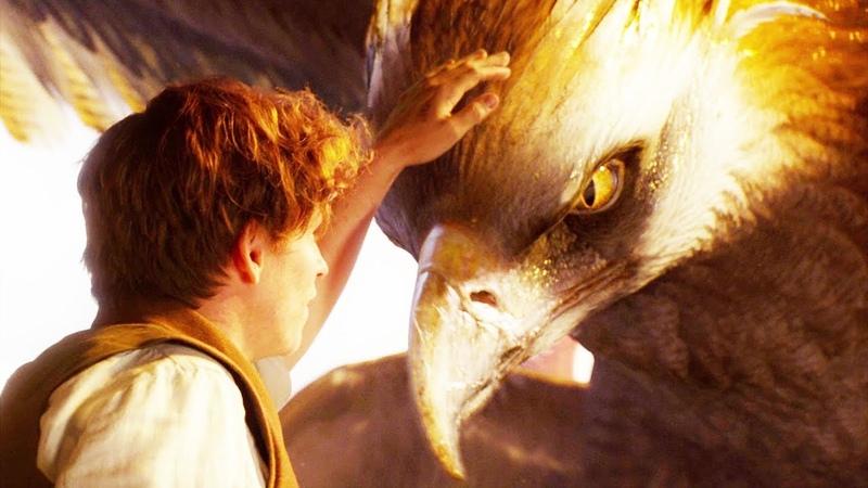 Пикирующий злыдень и Птица-гром — «Фантастические твари и где они обитают» (2016) сцена 2/7