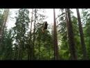 Зиплайн Норвежский парк Орех
