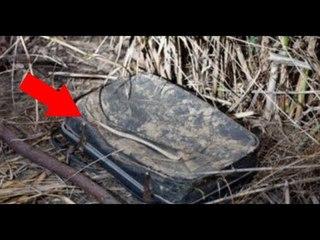 เจอกระเป๋าเดินทางถูกทิ้งข้างถนน พอเปิ&#