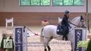 Mit dem Speedtrail zum Sieg ✨ Working Equitation Turnier Lea-Sophie Jell mit Imitado