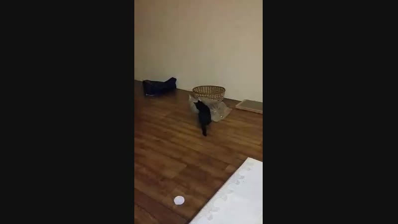 Видео привет от Наоми-Айки))