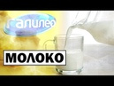 Галилео Молоко 🥛 Milk