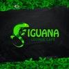 Lounge Cafe IGUANA |  Игуана +18