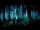 Мистическая ночь в Лесу Смерти Аудиозапись с рассказом часть 2