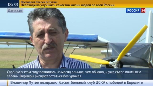 Новости на Россия 24 • Фермеры Дагестана рискуют остаться без урожая из-за саранчи