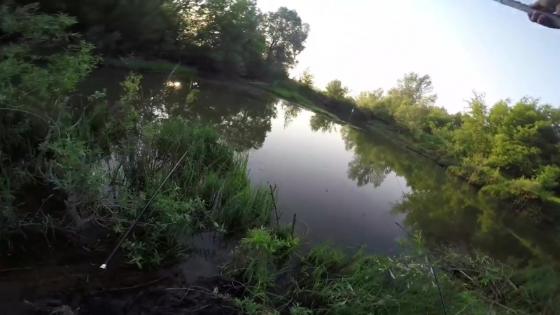 Активный клев карася на утренней зорьке!Душевная вышла рыбалка!Карась напоплавок.