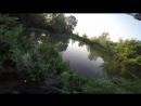 Активный клев карася на утренней зорьке Душевная вышла рыбалка Карась напоплавок