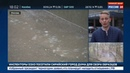 Новости на Россия 24 • Шторм в Москве: дерево упало на людей