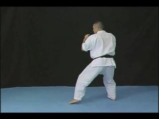Norichika Tsukamoto show the Brazilian kick