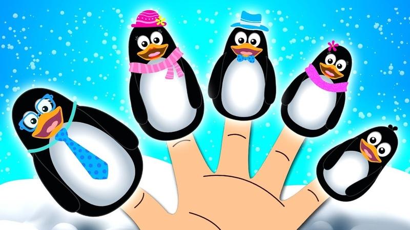 Penguin Finger Family   Nursery Rhymes songs