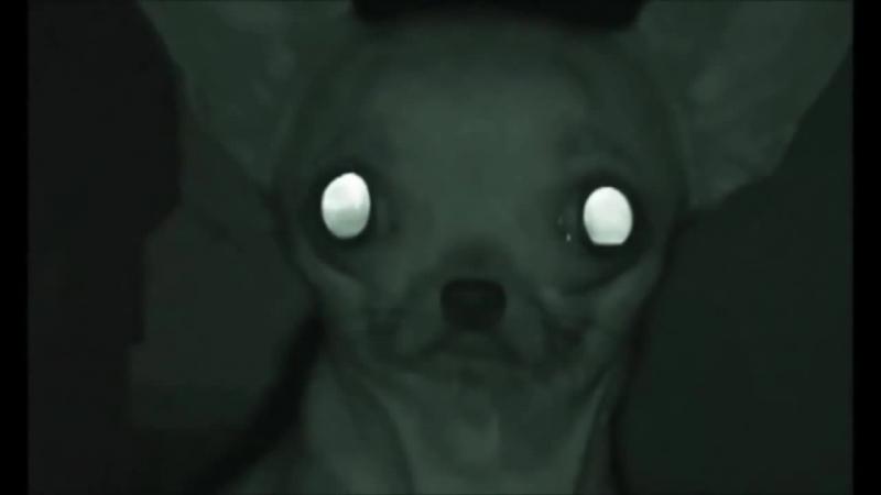 Жуткое видео - жёсткий психодел.