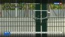 Новости на Россия 24 • За полгода все олимпийские объекты Рио вышли из строя