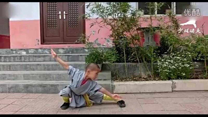 Комлекс пяти шагов wubu quan 五步拳