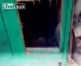 Парнишка залез в собачью будку