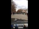 «Папа, нас посадят!»: актер Панин проехал на Gelandewagen по пешеходной улице Саратова
