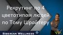 Рекрутинг в МЛМ 4 цветотипов людей по Тому Шрайтеру/ Siberian Wellness / Сибирское Здоровье