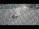 Весенне-пылевые работы (нем. Arbeit im Weinberg) (анг. Work in the Vineyard)